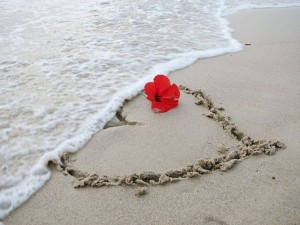 love-and-flower-in-the-sand-wallpaper-hd-skilal-672872