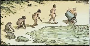 piraro-evolution