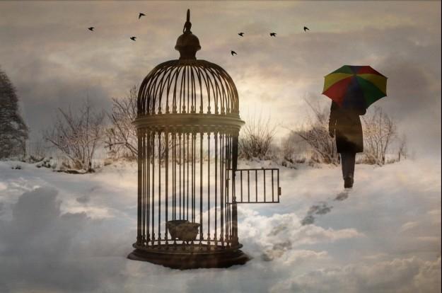empty-cage-e1437698895582