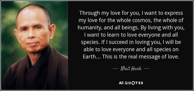 quote-through-my-love-for-you-i-want-to-express-my-love-for-the-whole-cosmos-the-whole-of-nhat-hanh-36-13-73