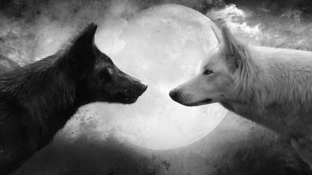 wolf-and-moon-cool-hd-wallpapers