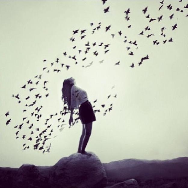107823-Feel-Free