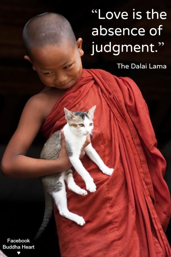 d9692c68476acfe7d4da08537309543e--dalai-lama-buddha