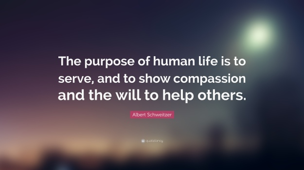 208804-Albert-Schweitzer-Quote-The-purpose-of-human-life-is-to-serve-and