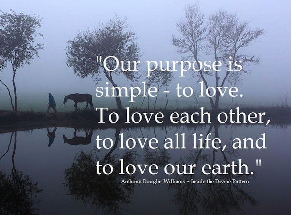 ourpurpose.jpg
