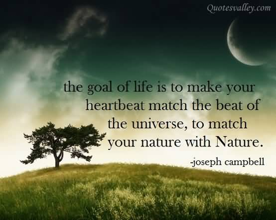the-goal-of-life-is-to-make-your-heartbeat-match-the-beat-of-the-universe-to-match-your-nature-with-nature-11