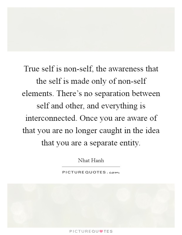 true-self-is-non-self-the-awareness-that-the-self-is-made-only-of-non-self-elements-theres-no-quote-1