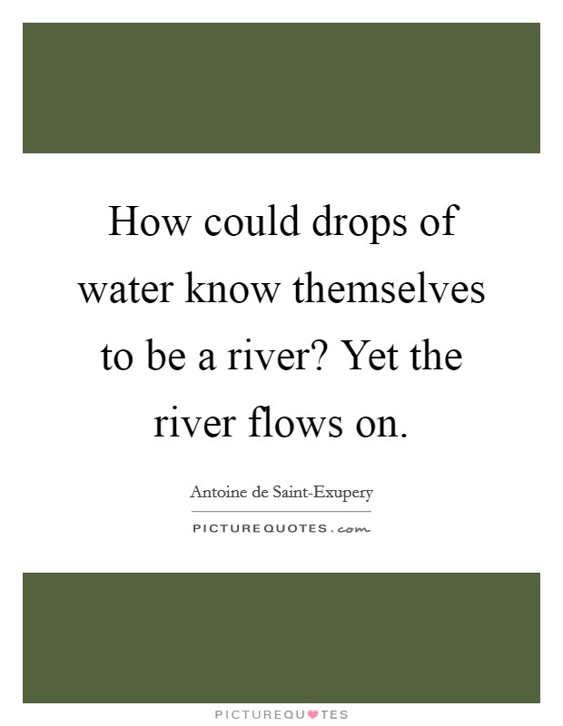 how-could-drops-of-water-know-themselves-to-be-a-river-yet-the-river-flows-on-quote-1