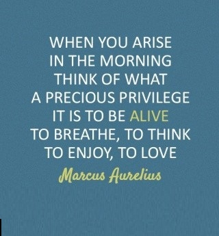 When-you-arise-in-the-morning-think-of-what-a-precious-privilege-it-is-to-be-alive-to-breathe-to-think-to-enjoy-to-love