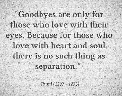 goodbyes-are-only-for-those-who-love-with-their-eyes-8745397.png